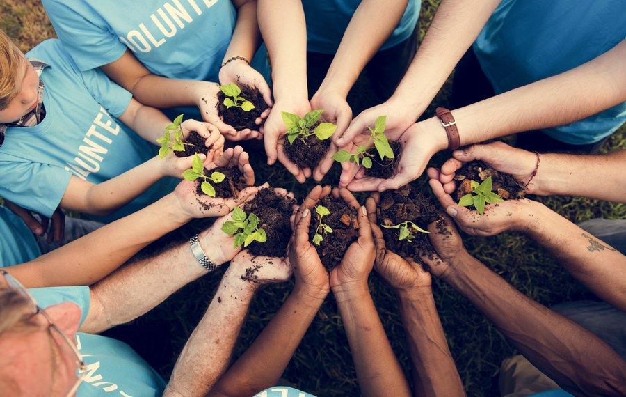 Impact investment: jótékonyság vagy úri hóbort?